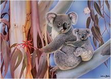 20120309123442-20120306003103-koala11.jpg